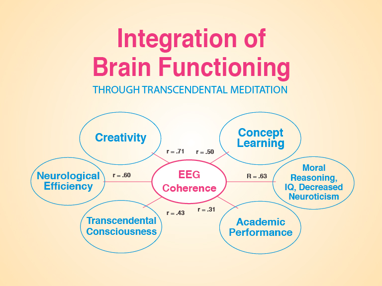 brain plasticity and transcendental meditation essay Pdf   this random-assignment pilot study investigated effects of transcendental meditation (tm) practice on task performance and brain functioning in 18 adhd students, age 11á14 years students.